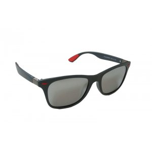 Polarizačné slnečné okuliare Wayfarer Silver matné
